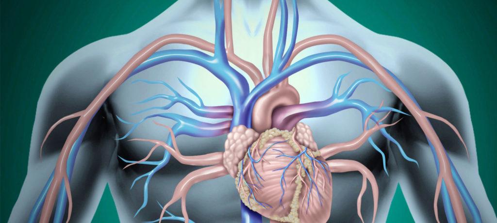 Complicazioni da interventi di cardiochirurgia: le responsabilità dello staff ospedaliero